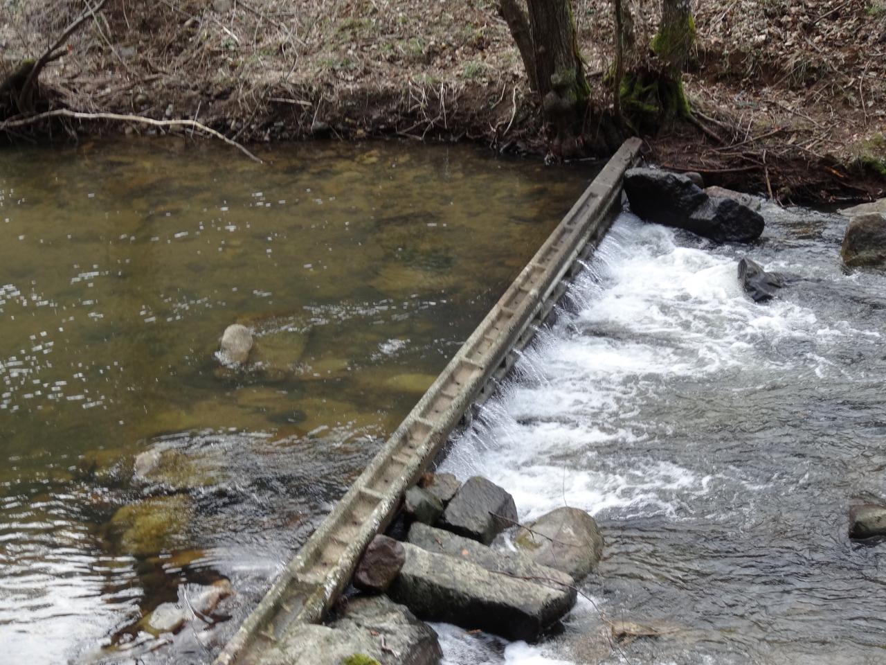 Nettoyage de rivière le 01 Mars 2014